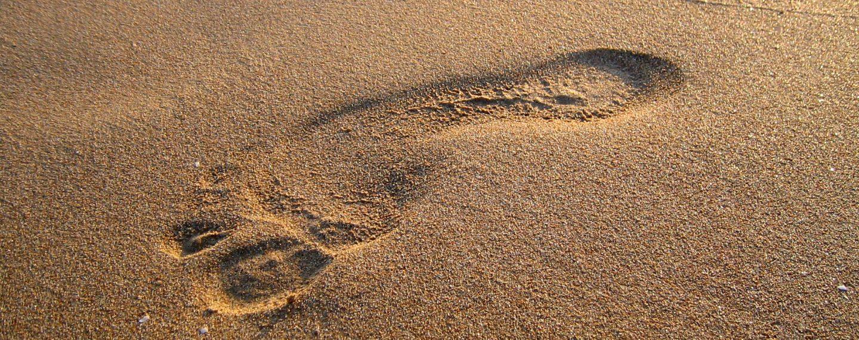 cropped-Spur-im-Sand2.jpg